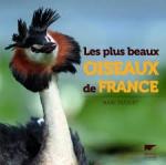 oiseaux de france.jpg